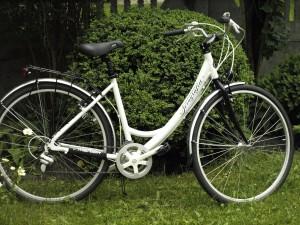 Rower - nagroda od Wójta Gminy Buczek